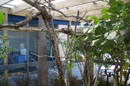 SWO enclosure photo #12